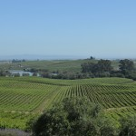View of Los Carneros from Artesa