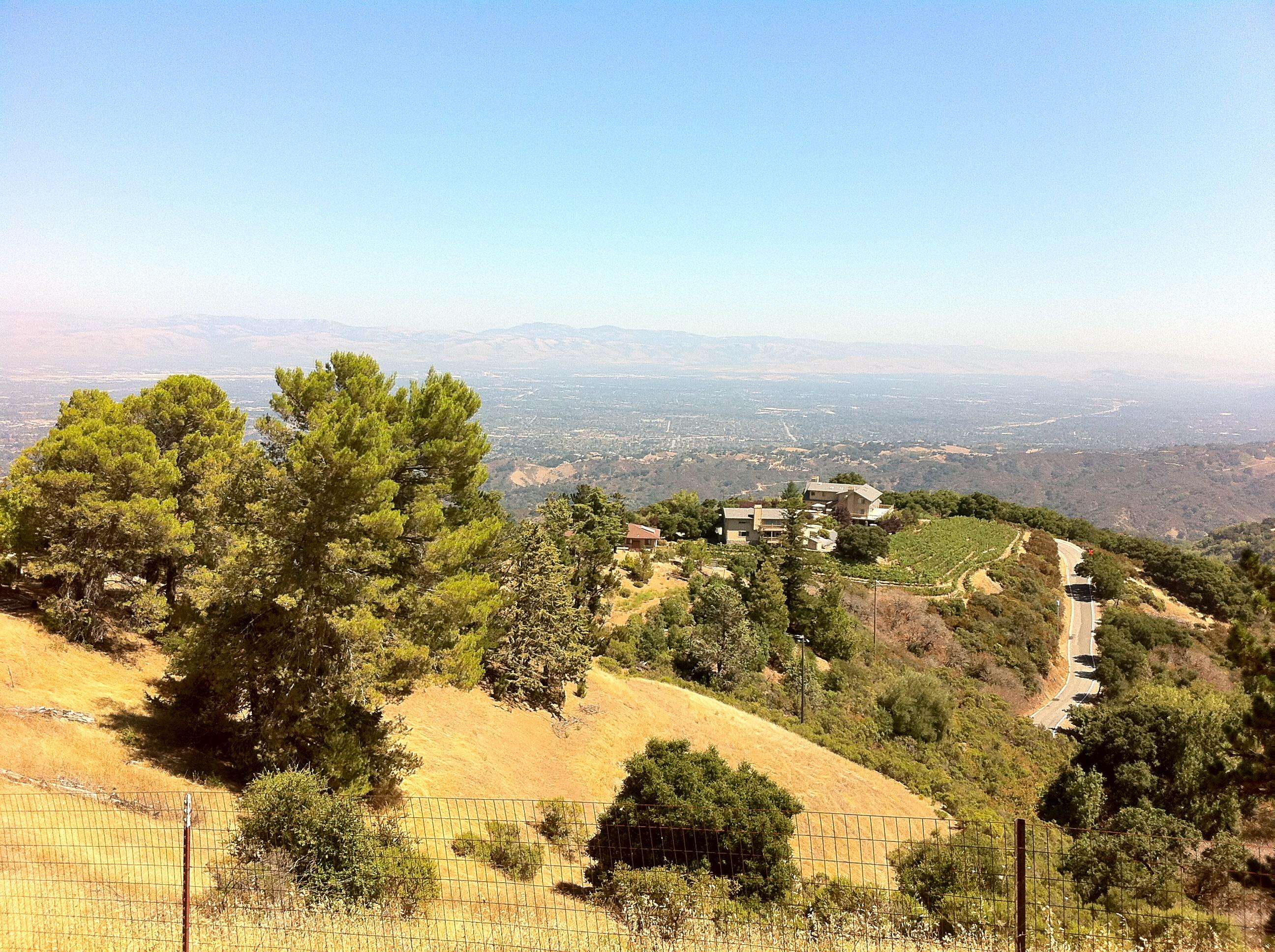 Ridge California Monte Bello 2006 Ridge Monte Bello Property