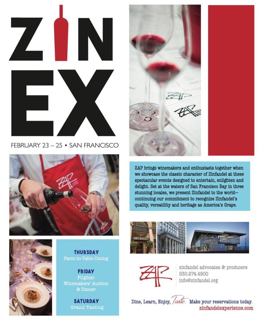 ZinEx17