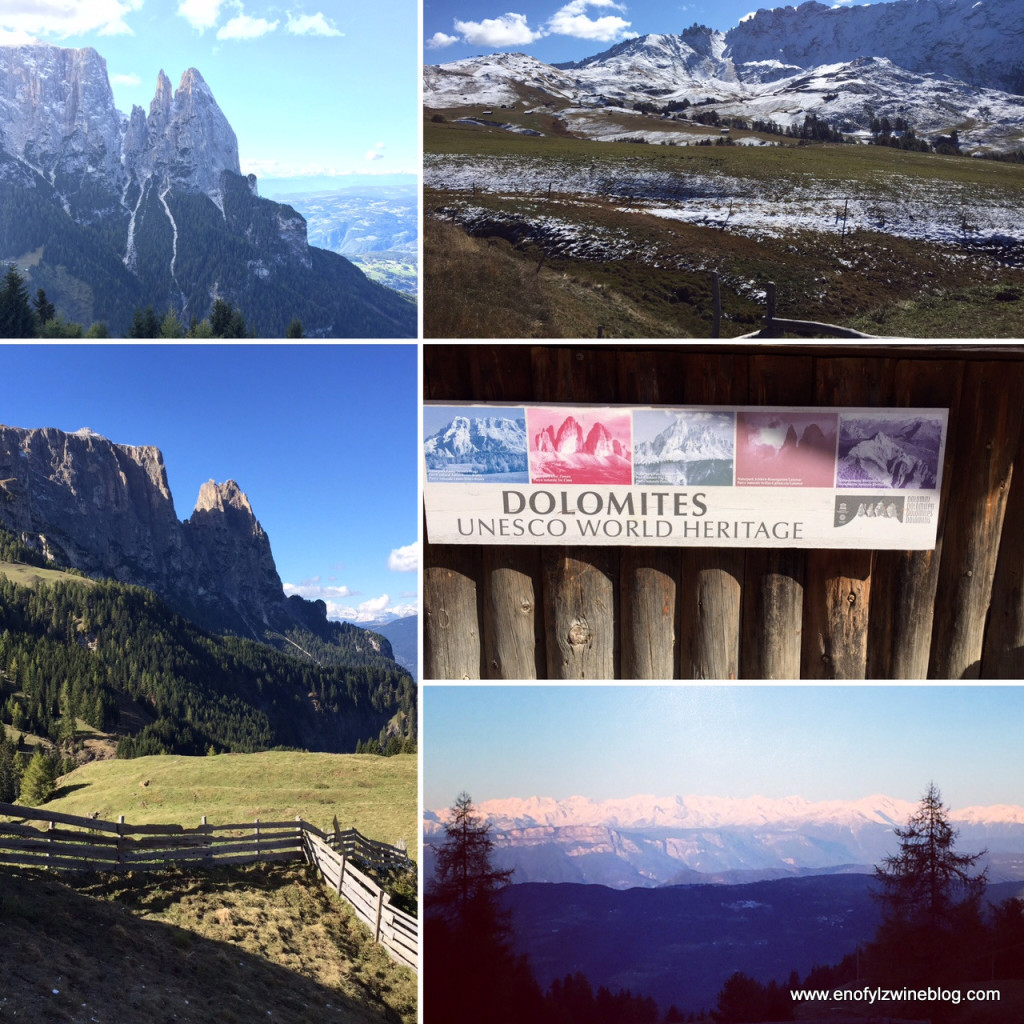 Some photos from our hike in the Dolomites! An amazing experience!
